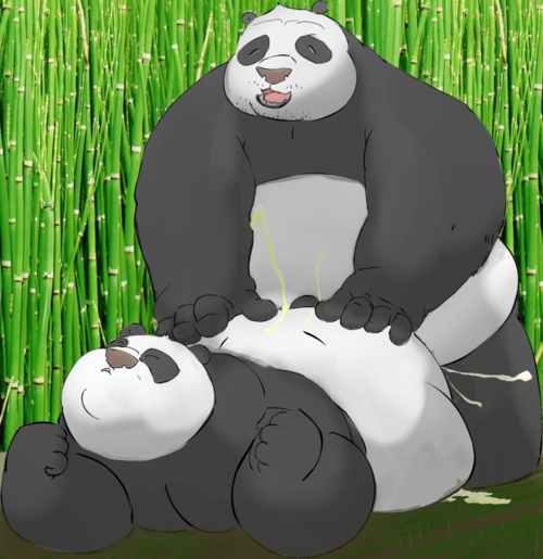 human panda shen fu kung Sword art online hollow fragment philia