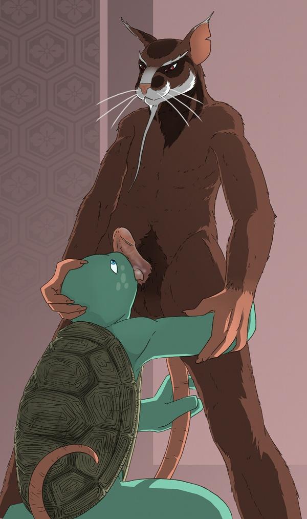 mutant teenage turtles hun ninja How to get atlas warframe
