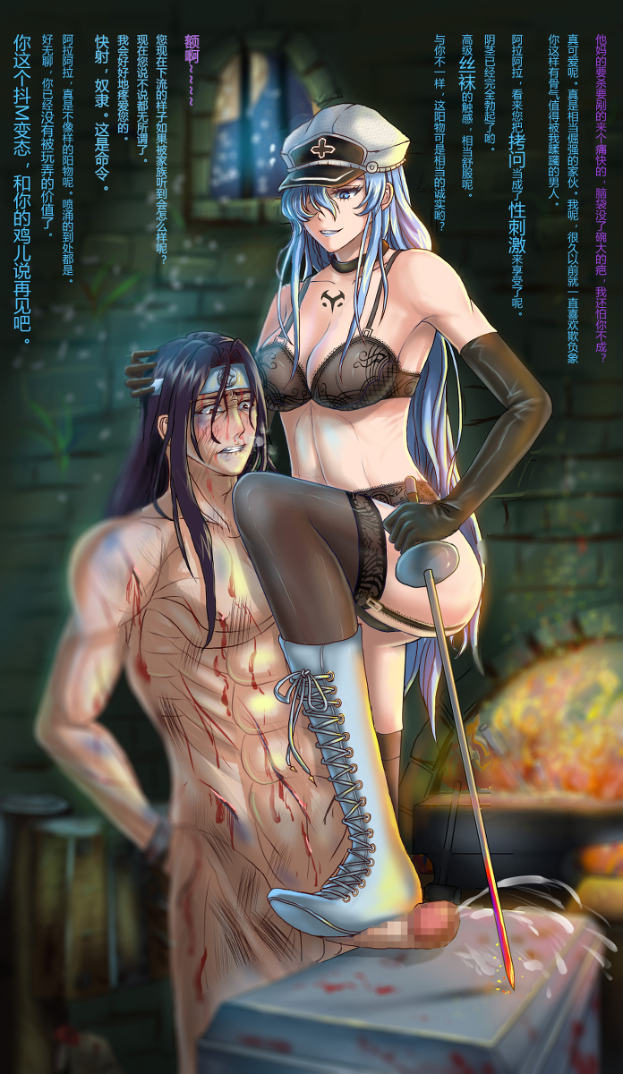 akame tatsumi kill ga and akame Vicky fairly odd parents